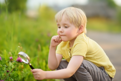 Charming kid exploring nature with magnifying glass
